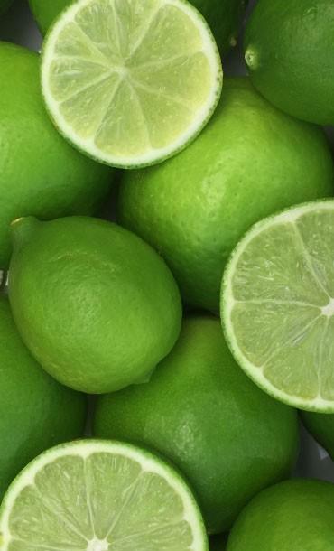 Limes Printed Yoga Fitness Mat