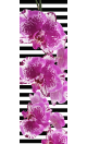 Orchid Printed Yoga Fitness Mat