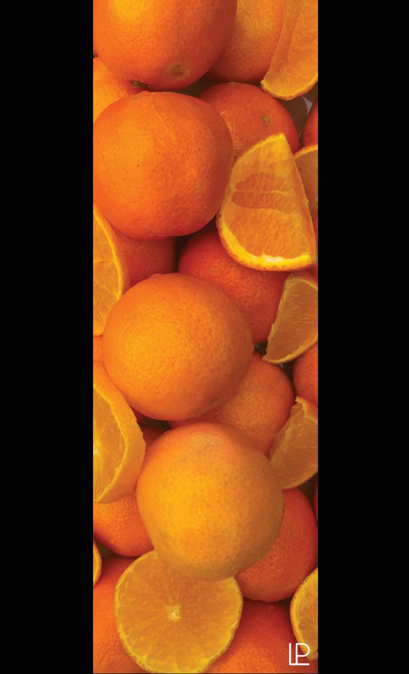 Oranges Printed Yoga Fitness Mat