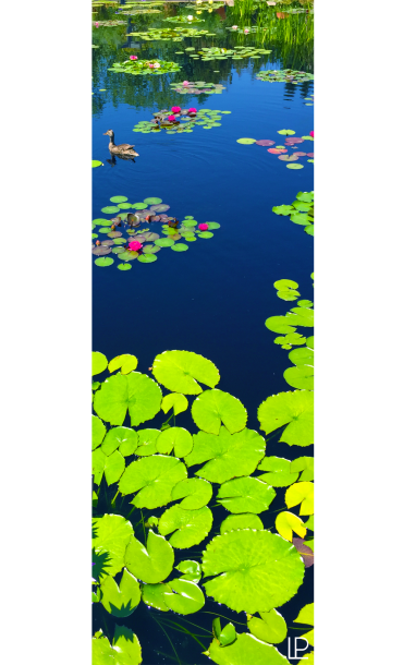 Lily Pond Printed Yoga Fitness Mat